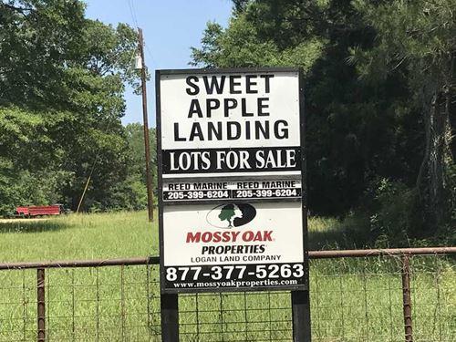 Sweet Apple Landing, Waterfront lo : Panola : Sumter County : Alabama
