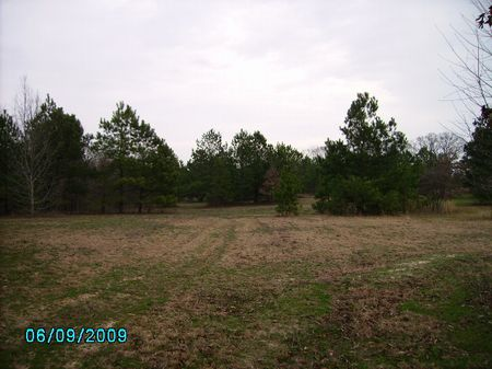 Beautiful Lots Great Location : Perry : Peach County : Georgia