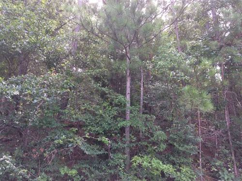 Wooded Building Lot in Brock Hills : Hokes Bluff : Etowah County : Alabama