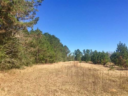 16.7 Acres Blackfoot Road Jackson : Vancleave : Jackson County : Mississippi