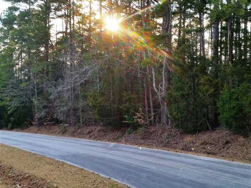 Lot 18 & 19 Riverview Circle : Fort Lawn : Chester County : South Carolina