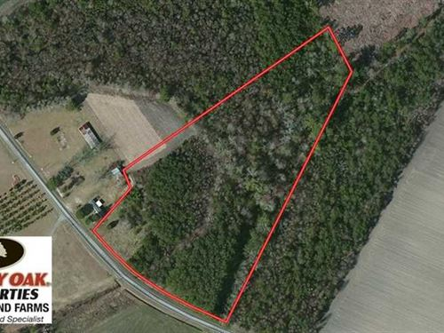 6.98 Acres of Recreational Land WI : Chadbourn : Columbus County : North Carolina