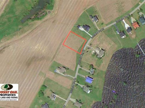.78 Acres of Waterview Land For : Windsor : Bertie County : North Carolina