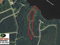 10 Acre Waterfront Lot For Sale in : Edenton : Chowan County : North Carolina