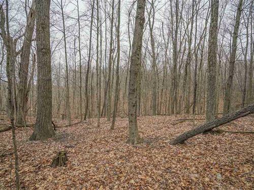 Bell Rd - 10 Acres - Morgan County : Malta : Morgan County : Ohio