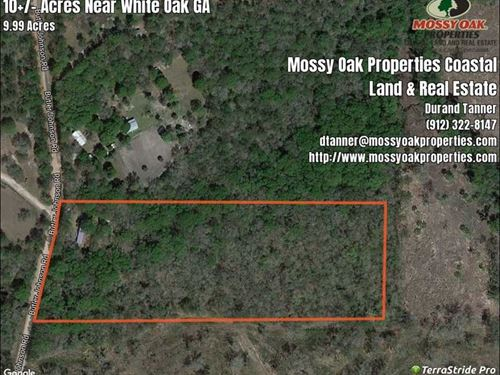 10 Acres With Mobile Home For : White Oak : Camden County : Georgia