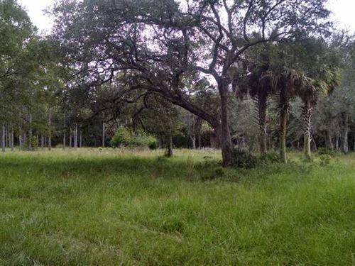 11 Acres of Rural Land in Camden : Kingsland : Camden County : Georgia