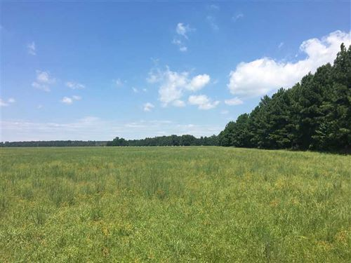 Price Drop- 10 Acre Lots For Sale : Beebe : White County : Arkansas