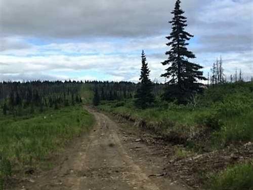 4.44 Acres in The Caribou Hills Ke : Ninilchik : Kenai Peninsula Borough : Alaska