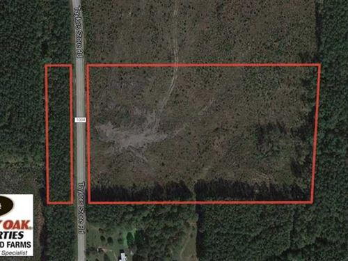 10 Acres Residential Hunting Land : Whitakers : Nash County : North Carolina
