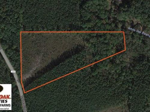 Reduced, 8 Acres of Residential : Whitakers : Nash County : North Carolina