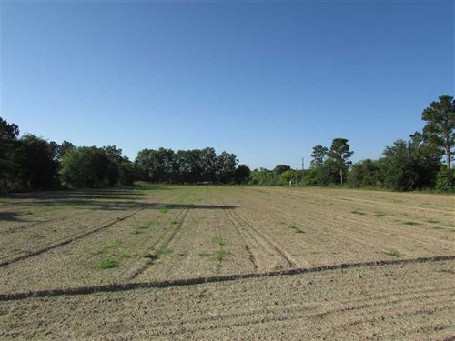 2 Acre Residential Lot With Deep : Hartsfield : Colquitt County : Georgia