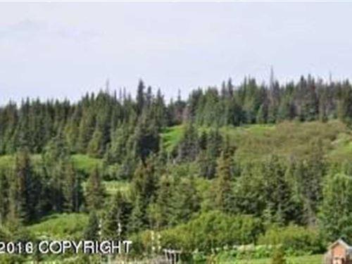Peaceful +3 Acre Lot in Anchor Poi : Anchor Point : Kenai Peninsula Borough : Alaska