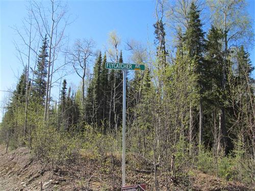 Great 1 Acre Recreational Lot, Clo : Soldotna : Kenai Peninsula Borough : Alaska