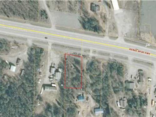 Insert Business Here, 1/2 Acre Co : Kenai : Kenai Peninsula Borough : Alaska
