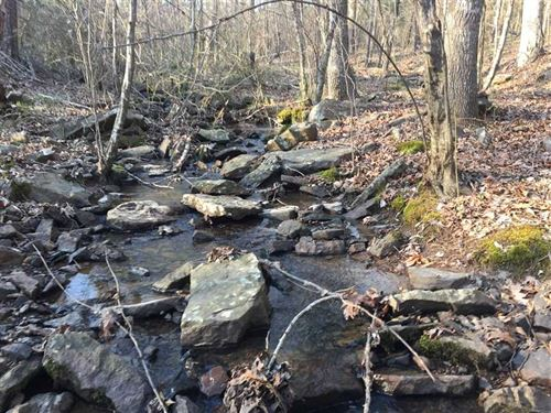 Primrose Creek Lot 52 Large Luxury : Heber Springs : Cleburne County : Arkansas