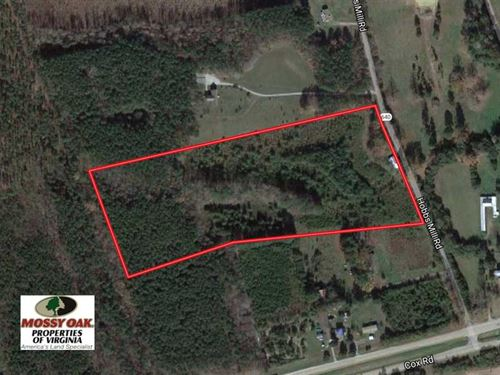 20.5 Acres of Hunting Land With Ca : Wilson : Dinwiddie County : Virginia