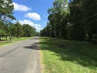 Swartz Tract, Ouachita Parish, 5 : Swartz : Ouachita Parish : Louisiana