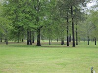 Loch Lomond Tract, Union Parish, 5 : Farmerville : Union Parish : Louisiana