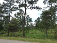 Wire Road Tract, Lincoln Parish, 2 : Simsboro : Lincoln Parish : Louisiana