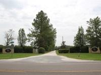 High & Dry Pasture-Great For Horses : Alachua : Alachua County : Florida