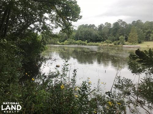 Lake Serene Waterfront Lot : Hattiesburg : Lamar County : Mississippi