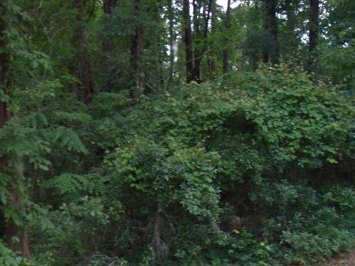 Leon County, Fl $22,500 Neg : Tallahassee : Leon County : Florida