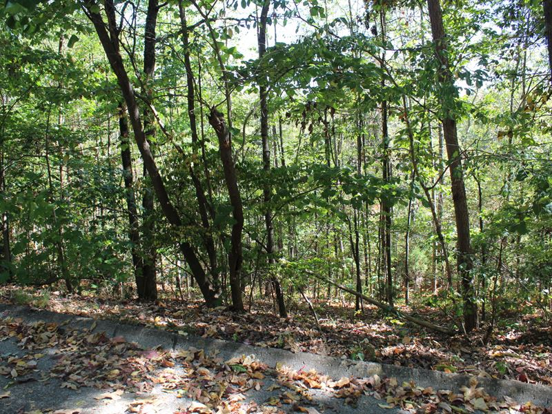 Building Lot Inside The City : Morristown : Hamblen County : Tennessee