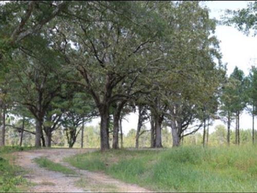 17 Acres In Neshoba County : Philadelphia : Neshoba County : Mississippi