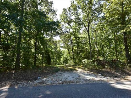 Beautiful Wooded Lot : Rossville : Fayette County : Tennessee