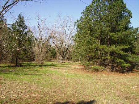 Great Homesite Owner Financing : Perry : Peach County : Georgia