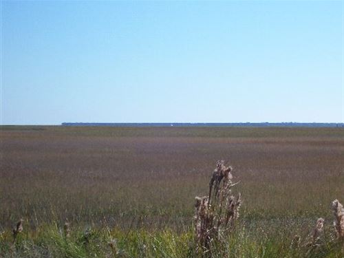 Six Acres Marsh Front Coastal : Townsend : McIntosh County : Georgia