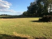 2.3 Acres 700 Feet From Lake : Saint Joseph : Tensas Parish : Louisiana