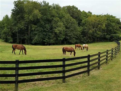 13+ Acre Horse Farm : Rock Hill : York County : South Carolina