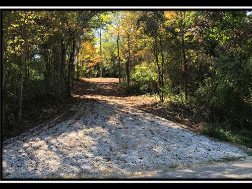 Point Rock Woods : Albany : Meigs County : Ohio