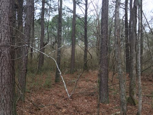 1.97 Acres Live Oak Road : Aragon : Polk County : Georgia