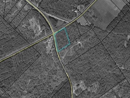 Wooded Lot In The Pines Subdivision : Toomsboro : Wilkinson County : Georgia