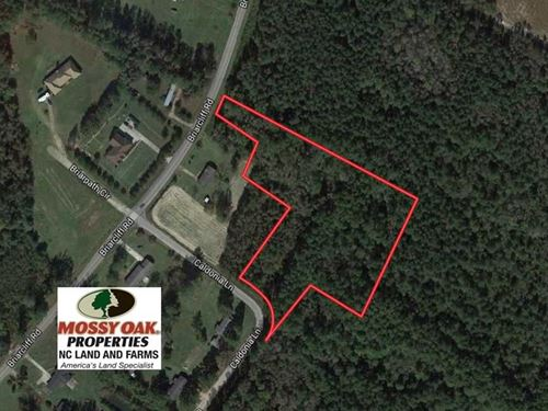 3.6 Acres of Recreational Timber : Lumberton : Robeson County : North Carolina