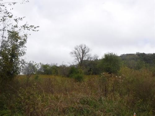 5.44Ac No Restrictions, Ideal Build : Pleasant Shade : Jackson County : Tennessee