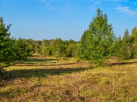 6.37 Acres In Holly Springs : Inman : Spartanburg County : South Carolina