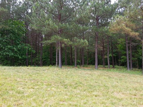 4.87+/-Acres Near Franklin Forest : South Pittsburg : Marion County : Tennessee