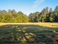 3.7 Acres In Holly Springs : Inman : Spartanburg County : South Carolina