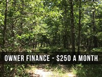 10.3 Acres With Trail On Nat For : Birch Tree : Shannon County : Missouri