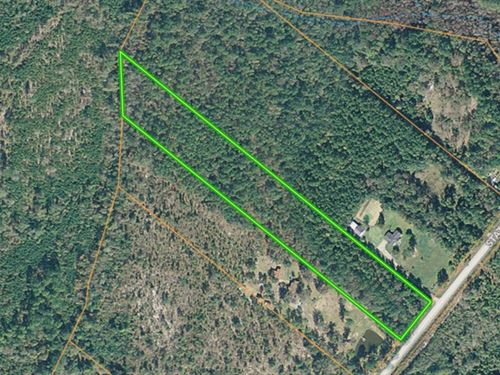 Marlboro County Sc Wooded Acreage : Wallace : Chesterfield County : South Carolina