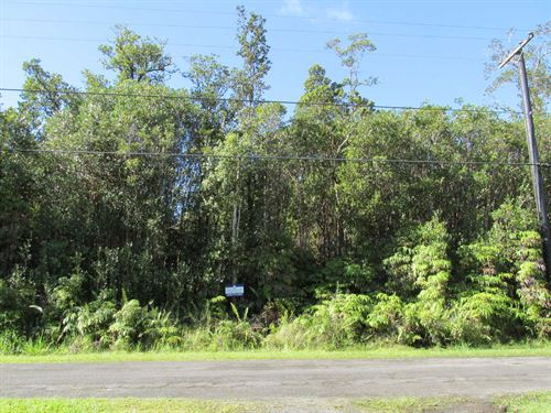 2 Acres, Close To Ocean, Financing : Mountain View : Hawaii County : Hawaii