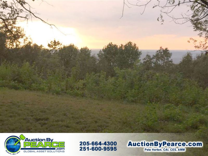 Fantastic Brow Property : Mentone : De Kalb County : Alabama
