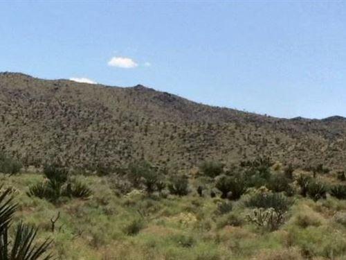 Mohave County, Az $8,000 Neg : Dolan Springs : Mohave County : Arizona