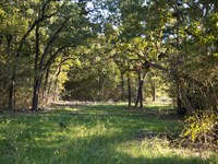 19.98 Ac Tract 9 Cedar Ridge Rd : Huntsville : Walker County : Texas