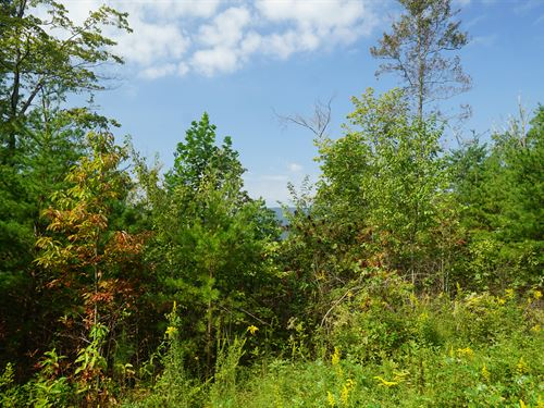 Live Near Cherokee National Forest : Reliance : Polk County : Tennessee