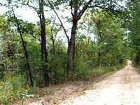 20 Acres, Half Fenced, Clearing : Manes : Wright County : Missouri